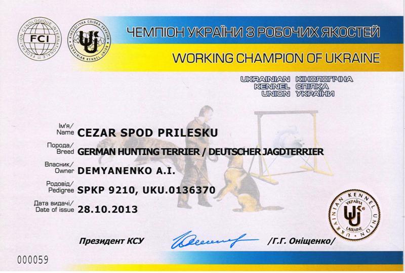 20131206-cop_cezar_ch_t_ua.jpg